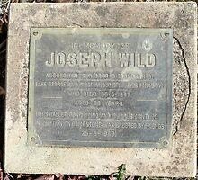 Tribute to Joseph Wild by Margaret  Hyde