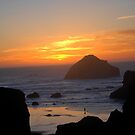 Face Rock at Bandon,Ore by Barbara Anderson