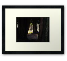 She Hid Behind the Tree Framed Print
