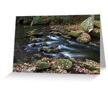 Twentymile Creek  Greeting Card