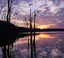 Newport News Sunset 2 by crystalseye