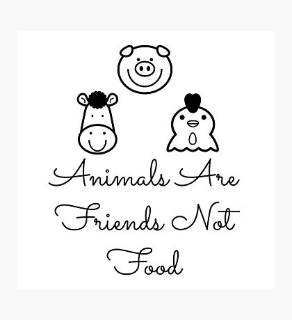 Animals Are Friends Not Food Photographic Print