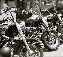 Lined up... by SMBPhotography
