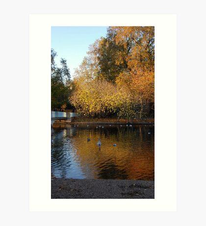 St James Park, London in the Autumn Art Print