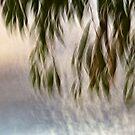 Whispering leaves #02 by LouD