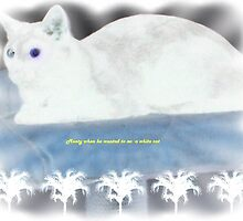 """""""Monty when he liked being a white cat"""" by Norma-jean Morrison"""