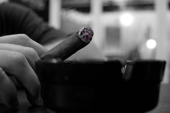 Black & White Stogie by Sharon-Leigh Ricker
