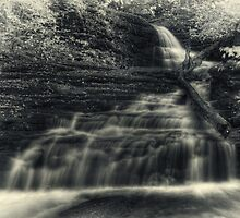 Huron Falls (faux vintage) by Aaron Campbell