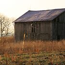 Old Barns Morning Glow by Geno Rugh