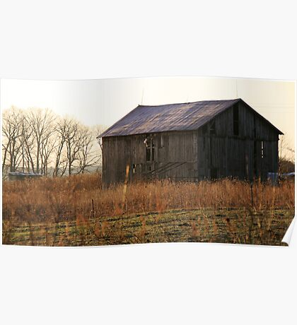 Old Barns Morning Glow Poster