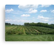 Rural green Canvas Print