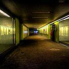 Dare I Walk Alone? by Luke Griffin