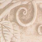 Flower Pot Detail Macro by Sandra Foster