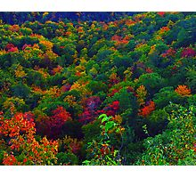 Awesome Autumn Photographic Print
