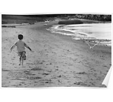 If I Had Wings ~ Chatham, Cape Cod Poster