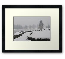 Botanical Garden after Snowstorm Framed Print