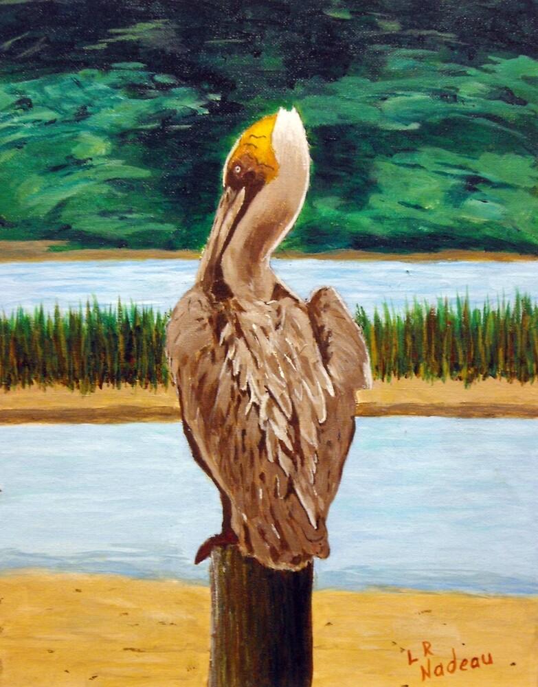 Just Chill'n by Lawrence Nadeau by CoastalCarolina