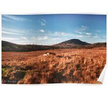 Typical Irish Landscape near Londonderry, Ireland Poster