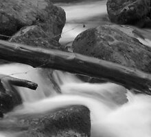 Rapids Sweet Creek Falls #4 by aussiedi