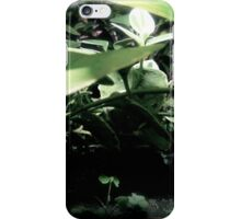 Fairy Land Night Scapes- Fairy Stone Path iPhone Case/Skin