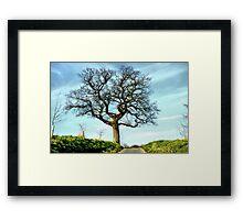 My Favourite Tree Framed Print