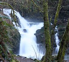 Sweet Creek Falls..Oregon..*USA* by Chappy