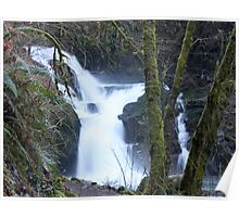 Sweet Creek Falls..Oregon..*USA* Poster