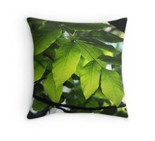 Forest details, Sibbald Point Provincial Park... Throw Pillow
