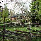 Old Homestead in Springtime by Merja Waters