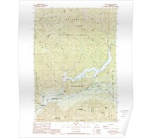 USGS Topo Map Oregon Blue River 279074 1989 24000 Poster