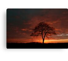 Copper Sunset Canvas Print