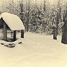Snowy Day by Edward Myers