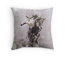 I believed you... Throw Pillow
