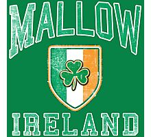 Mallow, Ireland with Shamrock Photographic Print