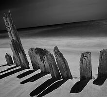 Pilings on the beach by Randall Nyhof