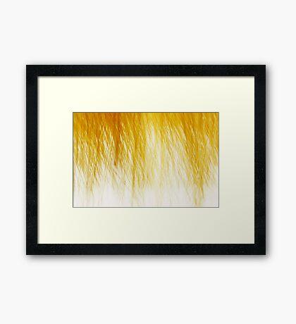 Prairie Grass In Winter Framed Print