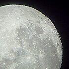 January Moon by robomeerkat