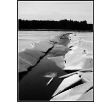 Frozen Cranberry Bog in New England Photographic Print