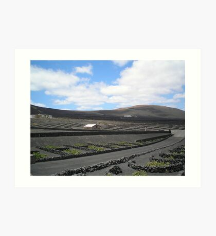 Vineyards in Lanzarote Art Print