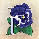 P is for Pansy by Stephanie Smith