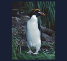 Awesome Macaroni Penguin Kids Clothes