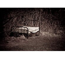 Nature's Bed Photographic Print
