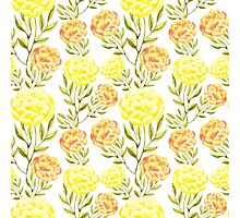 Peony. Yellow and peach color flowers. Summer mood. Delicate nature background. Photographic Print