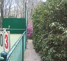 Love-Three Tennis Court Nestled in the Laurel and Pink Azaleas by fionahoratio
