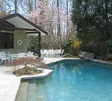 Spring-Time Pool House Nestled inthe Evergreens and Flowering Trees by fionahoratio