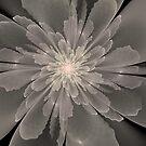 Flor de la Pureza by Jaclyn Hughes