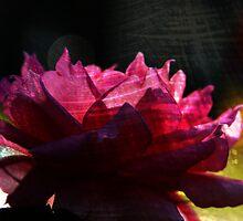 Chi Energy Flower by FeeBeeDee