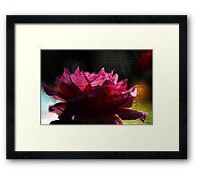 Chi Energy Flower Framed Print