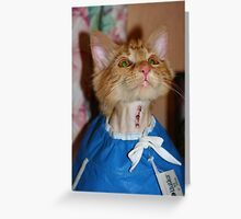 My Baby is Home!! Greeting Card