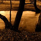 Twilight River  by StefanFierros